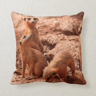 動物の野生のかわいいのまわりで見る4つのmeerkats クッション