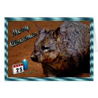 動物クリスマスオーストラリアWOMBATのクリスマス カード