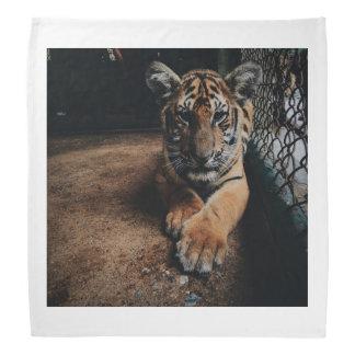 動物園のおりの中のトラ バンダナ