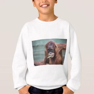 動物園 スウェットシャツ