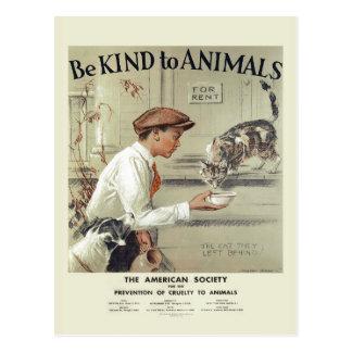 動物米国のヴィンテージの郵便はがき#2に親切があって下さい ポストカード