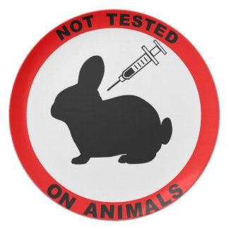 動物試験の記号無し プレート