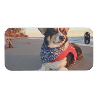 勤務中のライフガード iPhone 5 CASE