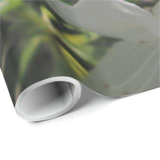 包装紙-白いツツジ ラッピングペーパー
