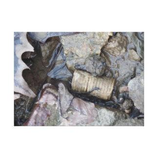 化石および葉 キャンバスプリント