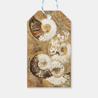 化石の貝が付いている有史以前の背景 ギフトタグ