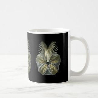 化石の雲丹 コーヒーマグカップ