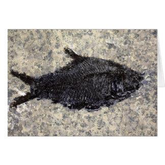 化石の魚 カード