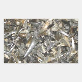 化石の鮫の歯パターン 長方形シール