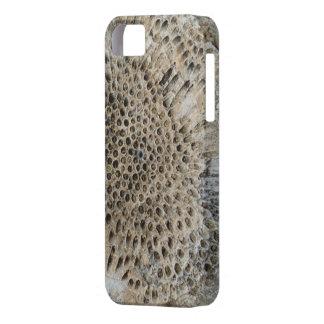 化石のiPhoneの場合、5/5s、やっとそこに iPhone SE/5/5s ケース
