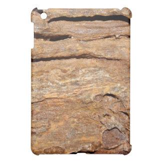 化石化された木の写真 iPad MINIケース