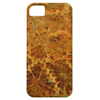 化石化された珊瑚の自然な碧玉の宝石用原石 iPhone SE/5/5s ケース