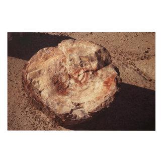 化石木 ウッドウォールアート