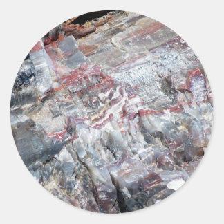 化石木 ラウンドシール