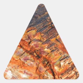 化石木 三角形シール