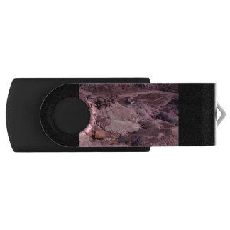 化石森林の国立公園 USBフラッシュドライブ