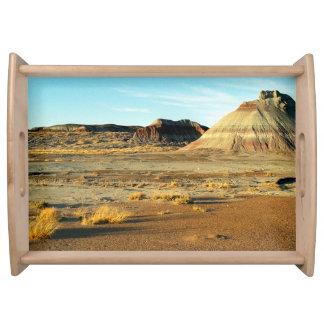 化石森林の砂漠 トレー