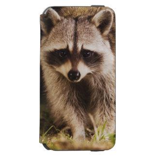 北のアライグマ、プロキオンのlotor、大人の incipio watson™ iPhone 5 財布型ケース