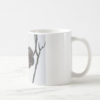 北のタカフクロウ6 コーヒーマグカップ