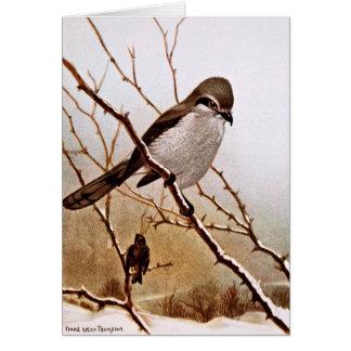 北の殴打の鳥 カード