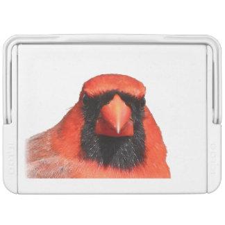 北の(鳥)ショウジョウコウカンチョウ クーラーボックス