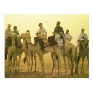 北アフリカのラクダのライダー、アルジェリアの砂漠 ポストカード