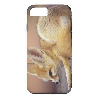 北アフリカ。 Fennec Fennecusのzerda) iPhone 8/7ケース