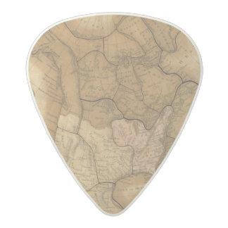 北アメリカ29 アセタール ギターピック