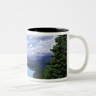 北アメリカ、カナダ、アルバータの碧玉6 ツートーンマグカップ