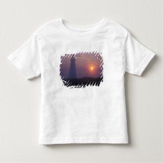 北アメリカ、カナダ、ニューファウンドランドの岬のやり、 トドラーTシャツ