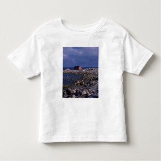 北アメリカ、カナダ、ニューファウンドランド、グロMorne トドラーTシャツ