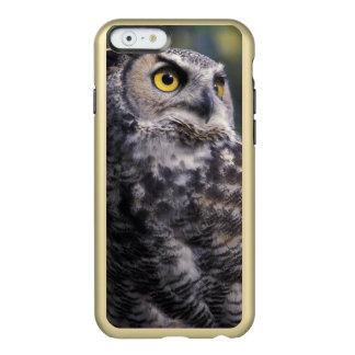北アメリカ、カナダ、ブリティッシュ・コロンビア、2 INCIPIO FEATHER SHINE iPhone 6ケース