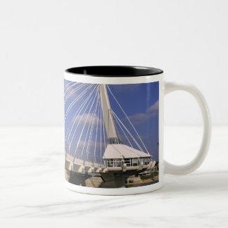 北アメリカ、カナダ、マニトバ、ウィニペグ、 ツートーンマグカップ