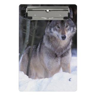 北アメリカ、カナダ、東のカナダのオオカミ ミニクリップボード