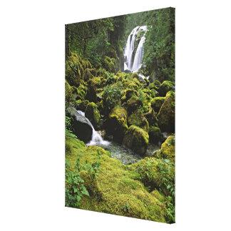 北アメリカ、米国、アラスカ。 滝 キャンバスプリント