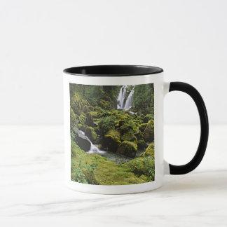北アメリカ、米国、アラスカ。 滝 マグカップ
