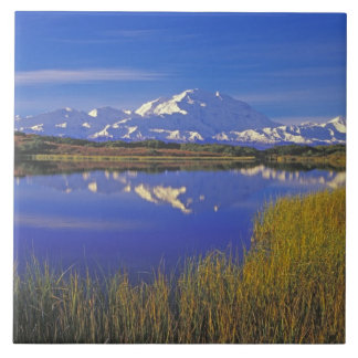 北アメリカ、米国、アラスカ、Denali NP、 正方形タイル大