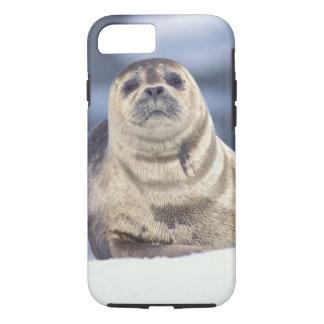北アメリカ、米国、アラスカ、S.E.、Le Conte iPhone 8/7ケース