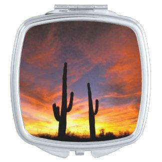 北アメリカ、米国、アリゾナのSonoranの砂漠