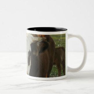 北アメリカ、米国、ニューハンプシャー。 雄牛 ツートーンマグカップ