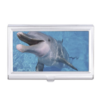 北アメリカ、米国、ハワイ。 イルカ3 名刺入れ