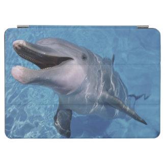 北アメリカ、米国、ハワイ。 イルカ3 iPad AIR カバー
