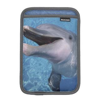 北アメリカ、米国、ハワイ。 イルカ3 iPad MINIスリーブ