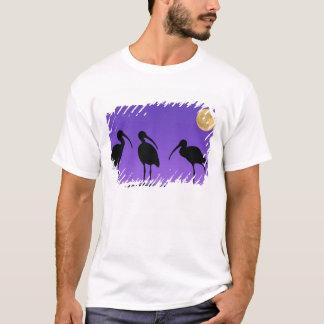 北アメリカ、米国、フロリダ、Mt. Dora、 Tシャツ