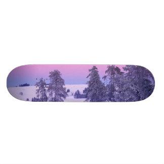 北アメリカ、米国、モンタナ、イエローストーン スケートボードデッキ