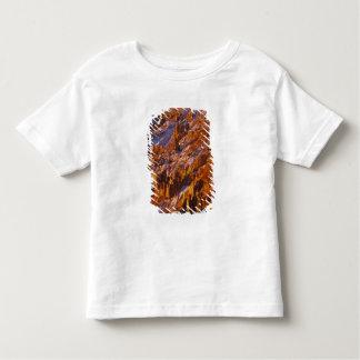 北アメリカ、米国、ユタのブライス渓谷 トドラーTシャツ