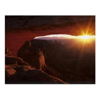 北アメリカ、米国、ユタ、Canyonlands ポストカード