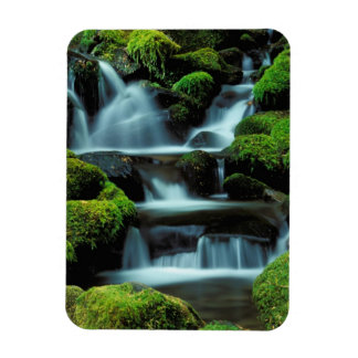 北アメリカ; 米国; ワシントン州のSOL Ducの滝 マグネット