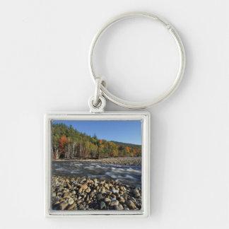 北アメリカ、米国、NHののAの玉石のビーチ キーホルダー