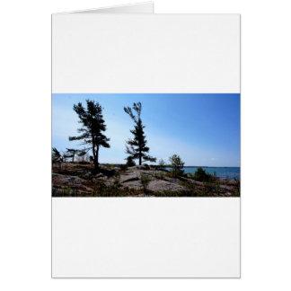北チャネルの石の松の木 カード